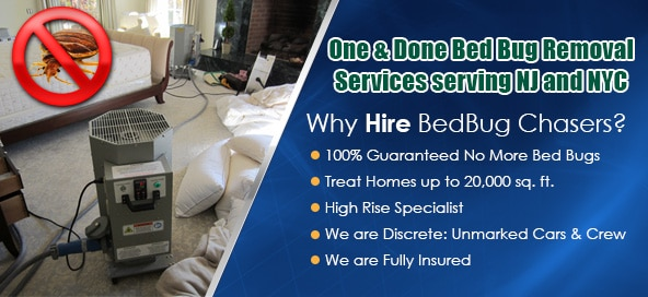Maryland Bed Bug Heat Treatment , Maryland Bed Bug Treatment , Maryland Bed Bug Exterminator , High Rise Bed Bugs , Apartment Bed Bugs , Condo Bed Bugs , Office Bed Bugs , Commercial Building Bed Bugs