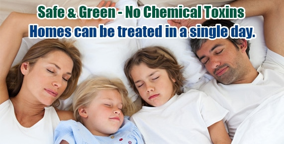 Chemical Free Bed Bug Treatment Baltimore , Get Rid of Bed Bugs Baltimore , Bed Bug Spray Baltimore