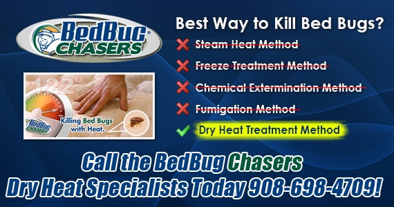 Bed Bugs Yacht , Bed Bugs Cruise Ship , Bed Bugs Sportfisherman , Bed Bugs Boat , Get Rid of Bed Bugs Boat , Get Rid of Bed Bugs Yacht , Get Rid of Bed Bugs Cruise Ship