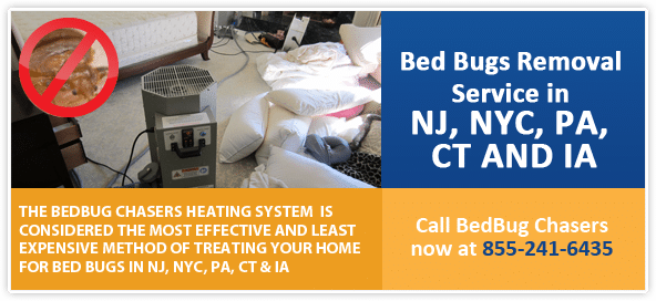 Get Rid of Bed Bugs Baltimore, Bed Bug Spray Baltimore, What to do Bed Bugs look like Baltimore, Kill Bed Bugs Baltimore, Bed Bug Treatment Baltimore, Bed Bug Dog Baltimore, How to get Rid of Bed Bugs Baltimore, Bed Bug Heat Treatment Baltimore, Bed Bug Eggs Baltimore, Bed Bug Exterminator Baltimore